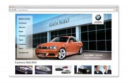 Niello BMW